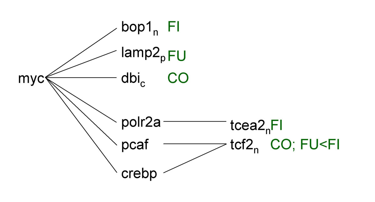 http://static-content.springer.com/image/art%3A10.1186%2F1476-511X-5-10/MediaObjects/12944_2006_Article_84_Fig7_HTML.jpg