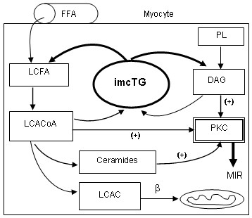 http://static-content.springer.com/image/art%3A10.1186%2F1476-511X-6-18/MediaObjects/12944_2007_Article_121_Fig1_HTML.jpg
