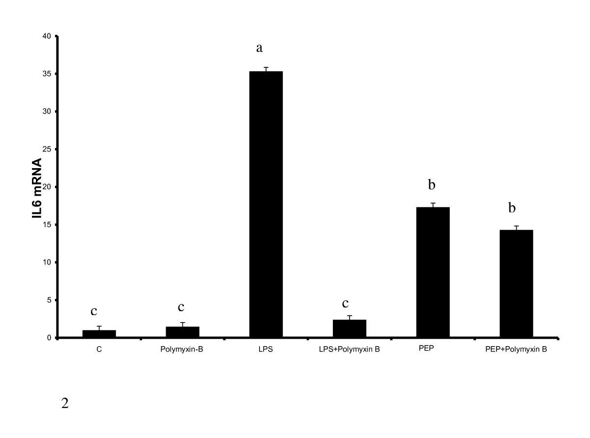 http://static-content.springer.com/image/art%3A10.1186%2F1476-9255-6-8/MediaObjects/12950_2008_Article_92_Fig2_HTML.jpg