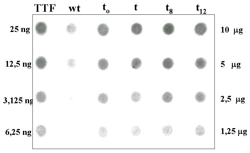 http://static-content.springer.com/image/art%3A10.1186%2F1477-3155-1-6/MediaObjects/12951_2003_Article_6_Fig5_HTML.jpg