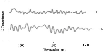 http://static-content.springer.com/image/art%3A10.1186%2F1477-3155-6-8/MediaObjects/12951_2008_Article_60_Fig2_HTML.jpg