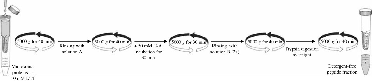 http://static-content.springer.com/image/art%3A10.1186%2F1477-5956-10-37/MediaObjects/12953_2011_Article_368_Fig2_HTML.jpg