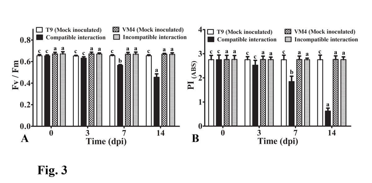 http://static-content.springer.com/image/art%3A10.1186%2F1477-5956-11-15/MediaObjects/12953_2012_Article_425_Fig3_HTML.jpg