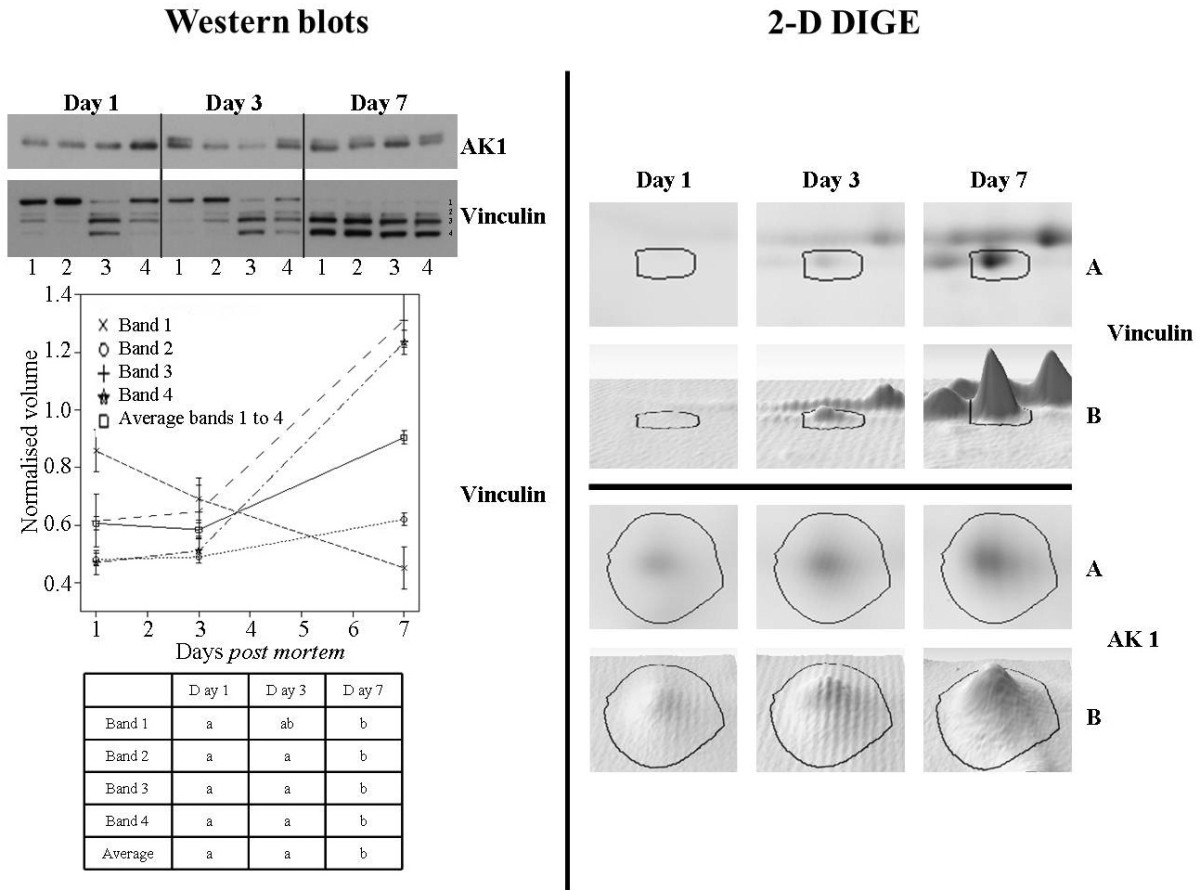 http://static-content.springer.com/image/art%3A10.1186%2F1477-5956-11-9/MediaObjects/12953_2012_Article_423_Fig5_HTML.jpg