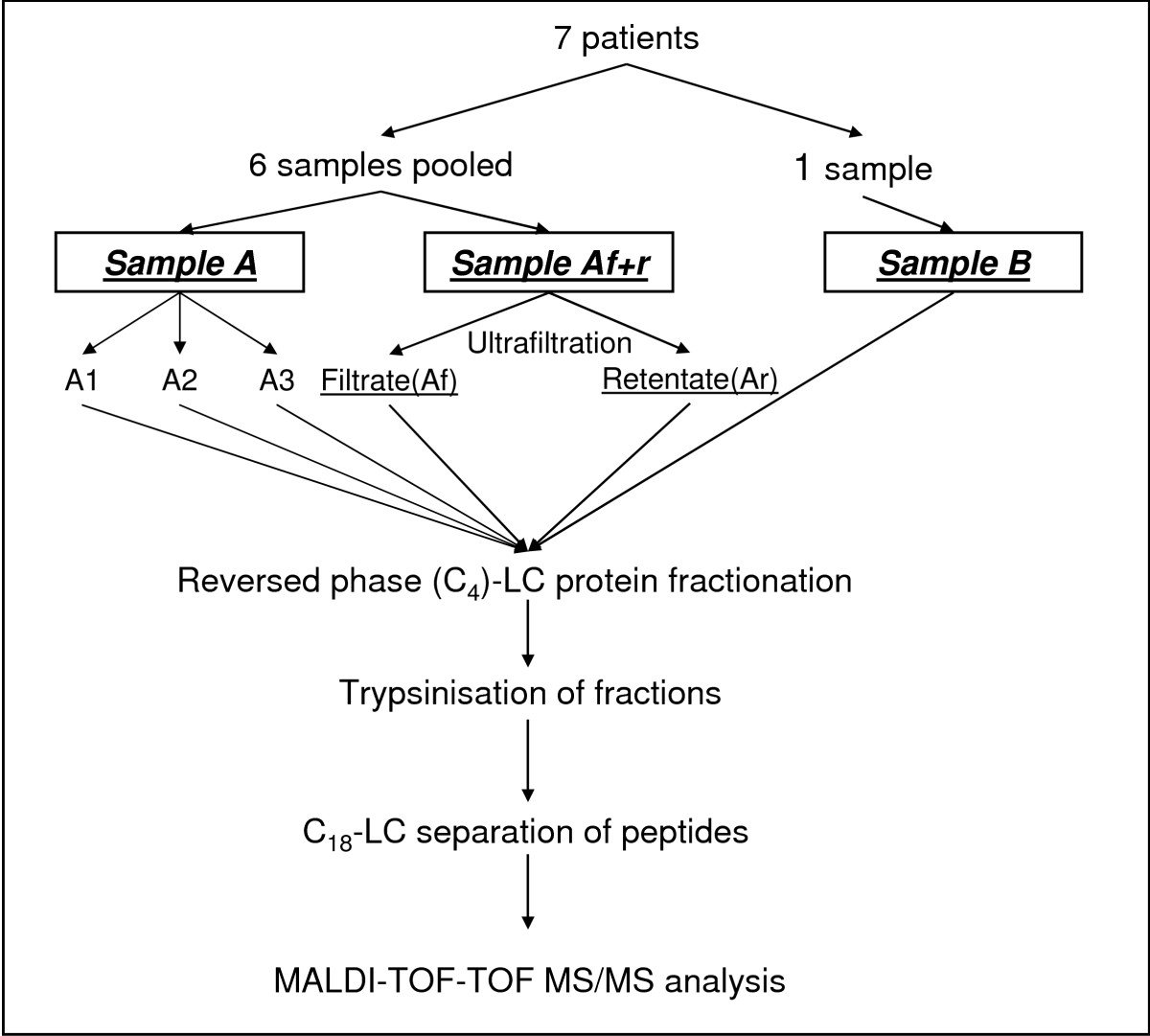 http://static-content.springer.com/image/art%3A10.1186%2F1477-5956-7-17/MediaObjects/12953_2008_Article_121_Fig1_HTML.jpg
