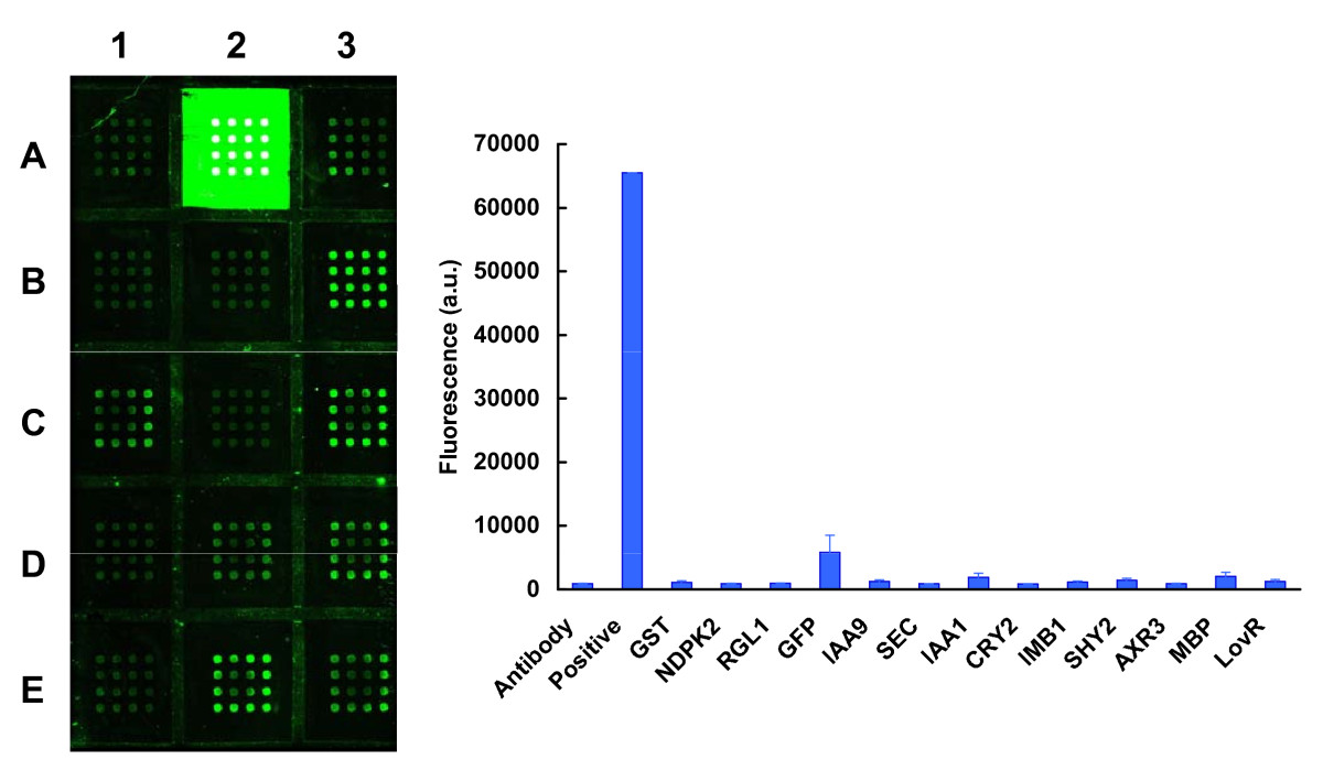 http://static-content.springer.com/image/art%3A10.1186%2F1477-5956-8-32/MediaObjects/12953_2009_Article_184_Fig3_HTML.jpg