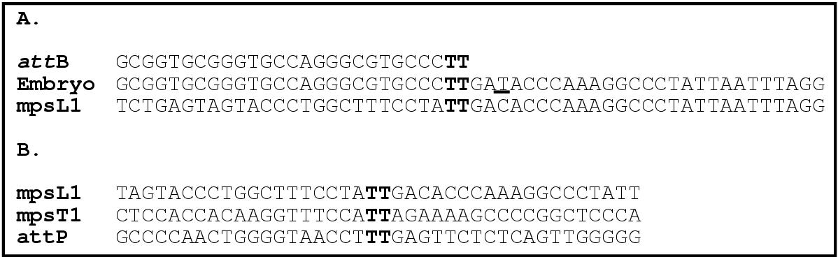 http://static-content.springer.com/image/art%3A10.1186%2F1477-7827-1-79/MediaObjects/12958_2003_Article_79_Fig1_HTML.jpg