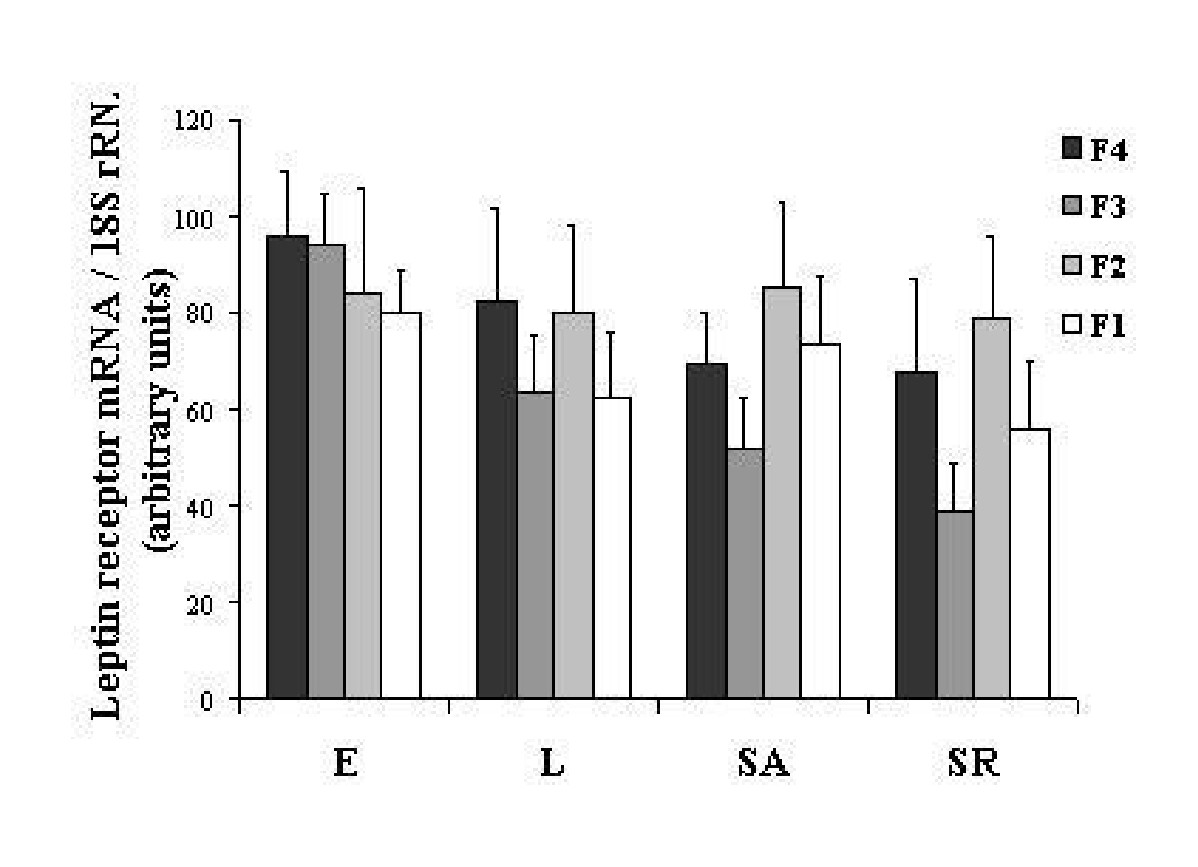 http://static-content.springer.com/image/art%3A10.1186%2F1477-7827-2-72/MediaObjects/12958_2004_Article_197_Fig3_HTML.jpg