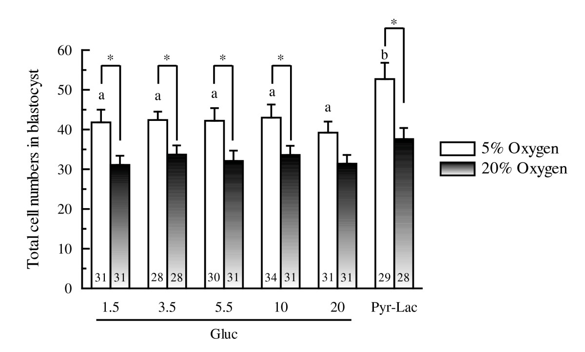 http://static-content.springer.com/image/art%3A10.1186%2F1477-7827-4-54/MediaObjects/12958_2006_Article_336_Fig6_HTML.jpg