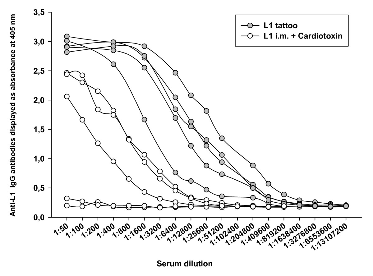 http://static-content.springer.com/image/art%3A10.1186%2F1479-0556-6-4/MediaObjects/12965_2007_Article_49_Fig3_HTML.jpg