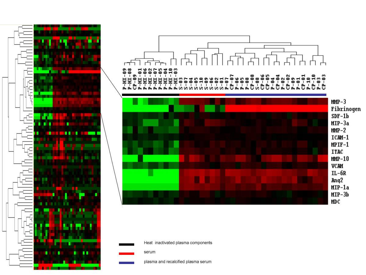 http://static-content.springer.com/image/art%3A10.1186%2F1479-5876-4-40/MediaObjects/12967_2006_Article_145_Fig2_HTML.jpg