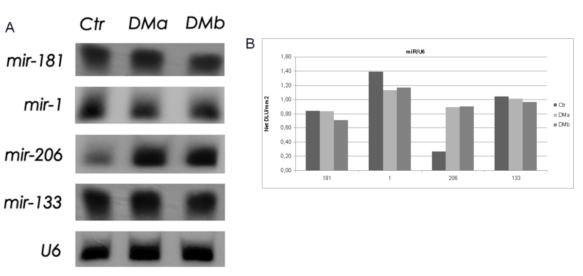 http://static-content.springer.com/image/art%3A10.1186%2F1479-5876-8-48/MediaObjects/12967_2009_Article_470_Fig2_HTML.jpg