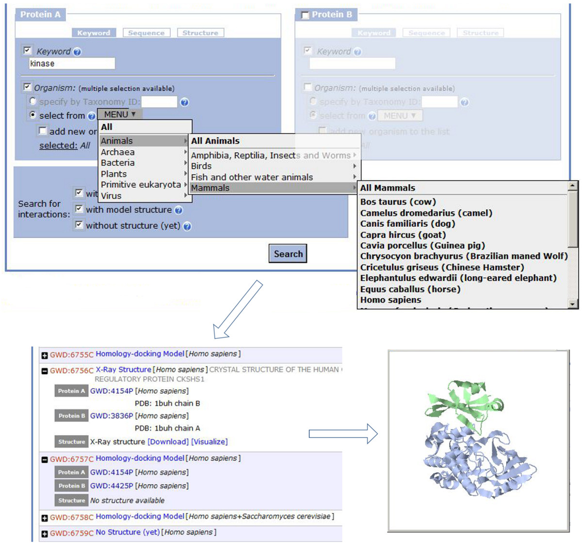 http://static-content.springer.com/image/art%3A10.1186%2F1479-7364-6-7/MediaObjects/40246_2012_Article_5_Fig2_HTML.jpg