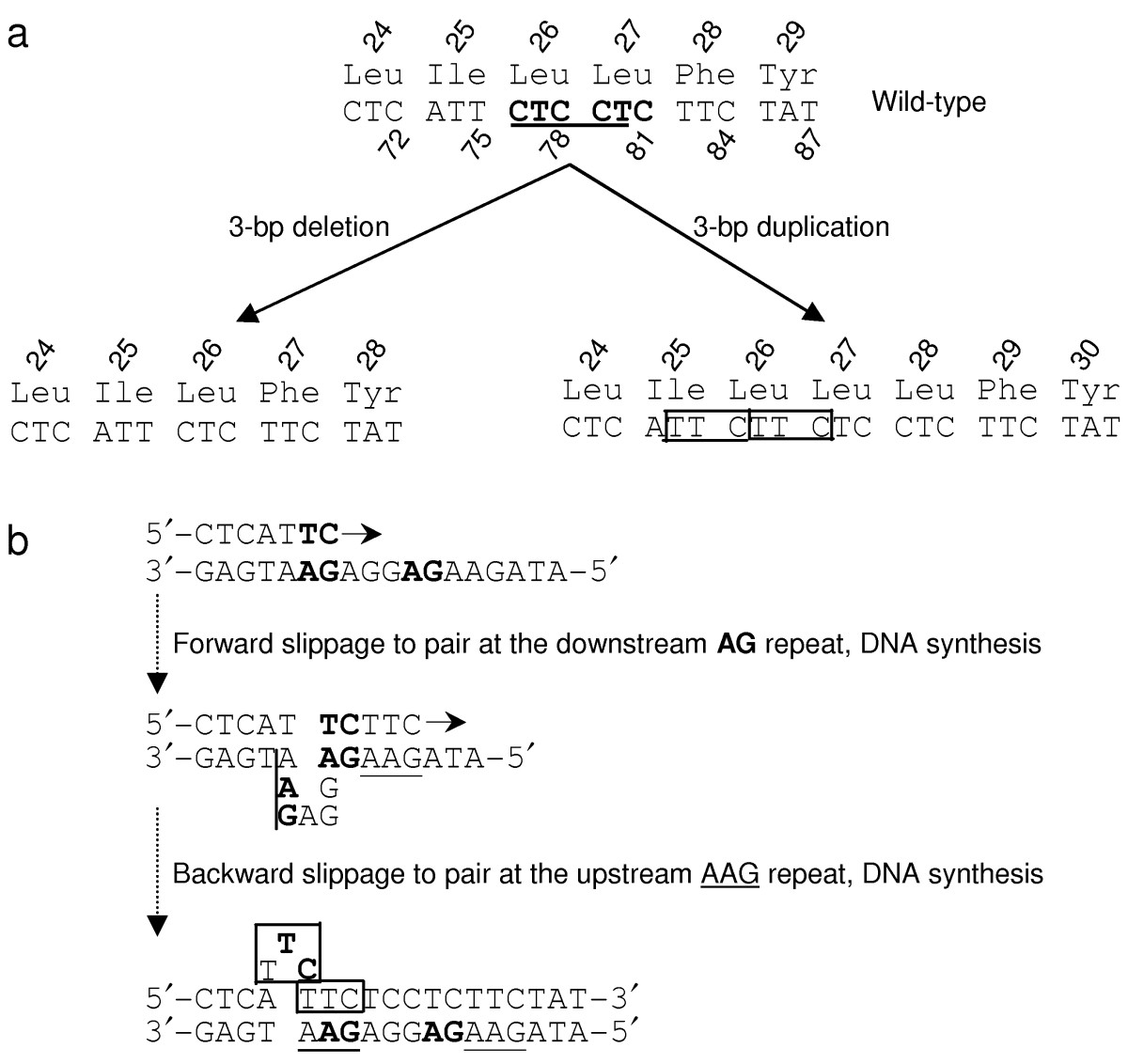 http://static-content.springer.com/image/art%3A10.1186%2F1479-7364-6-8/MediaObjects/40246_2012_Article_8_Fig1_HTML.jpg