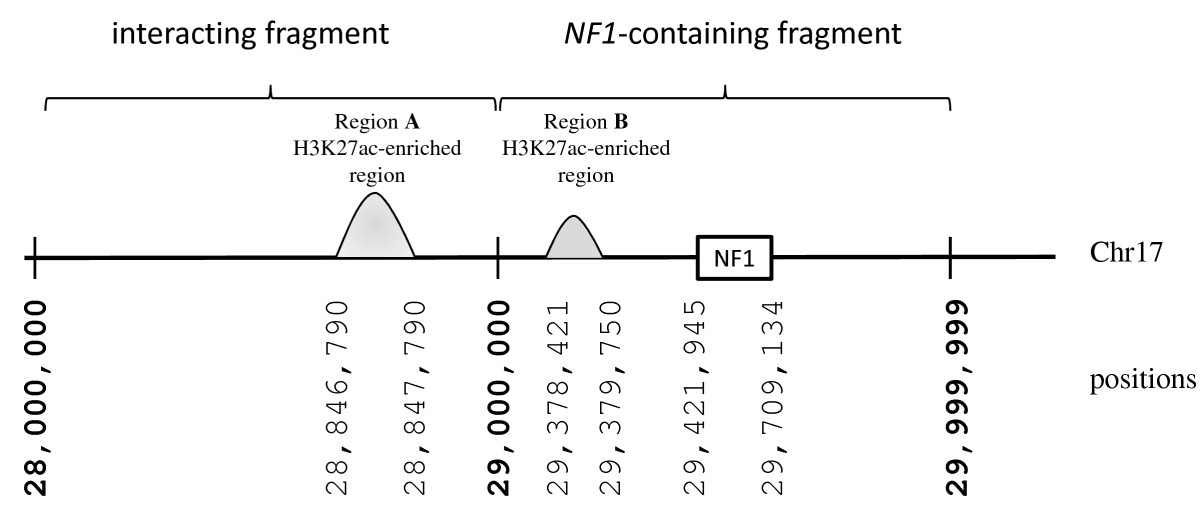 http://static-content.springer.com/image/art%3A10.1186%2F1479-7364-7-18/MediaObjects/40246_2013_Article_49_Fig1_HTML.jpg