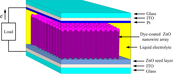 schematic diagram of dssc with zno nanowires work electrode.