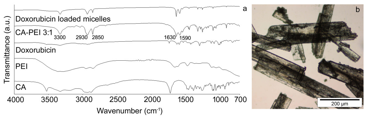 http://static-content.springer.com/image/art%3A10.1186%2F1556-276X-7-687/MediaObjects/11671_2012_Article_1218_Fig2_HTML.jpg