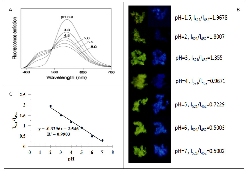 http://static-content.springer.com/image/art%3A10.1186%2F1556-276X-8-197/MediaObjects/11671_2013_Article_1450_Fig6_HTML.jpg