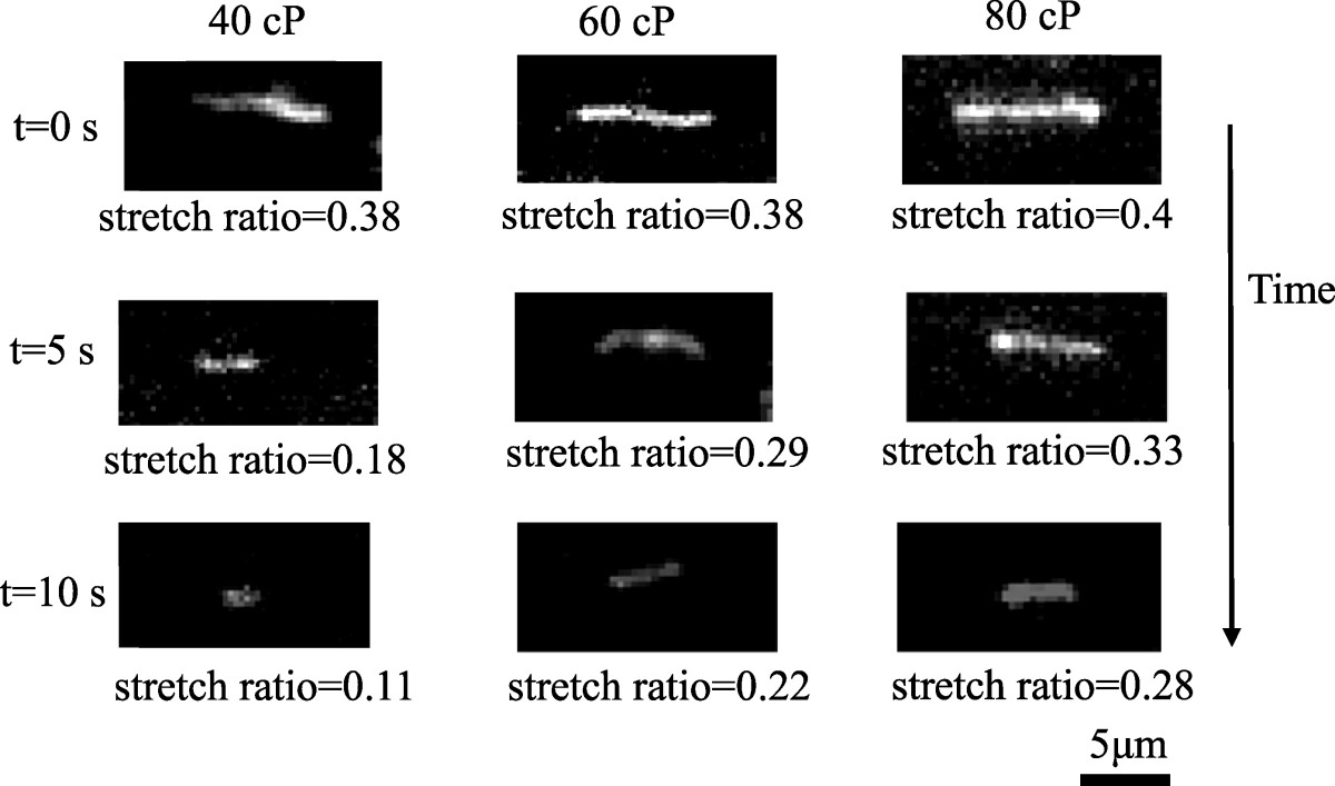 http://static-content.springer.com/image/art%3A10.1186%2F1556-276X-9-382/MediaObjects/11671_2014_Article_2146_Fig8_HTML.jpg