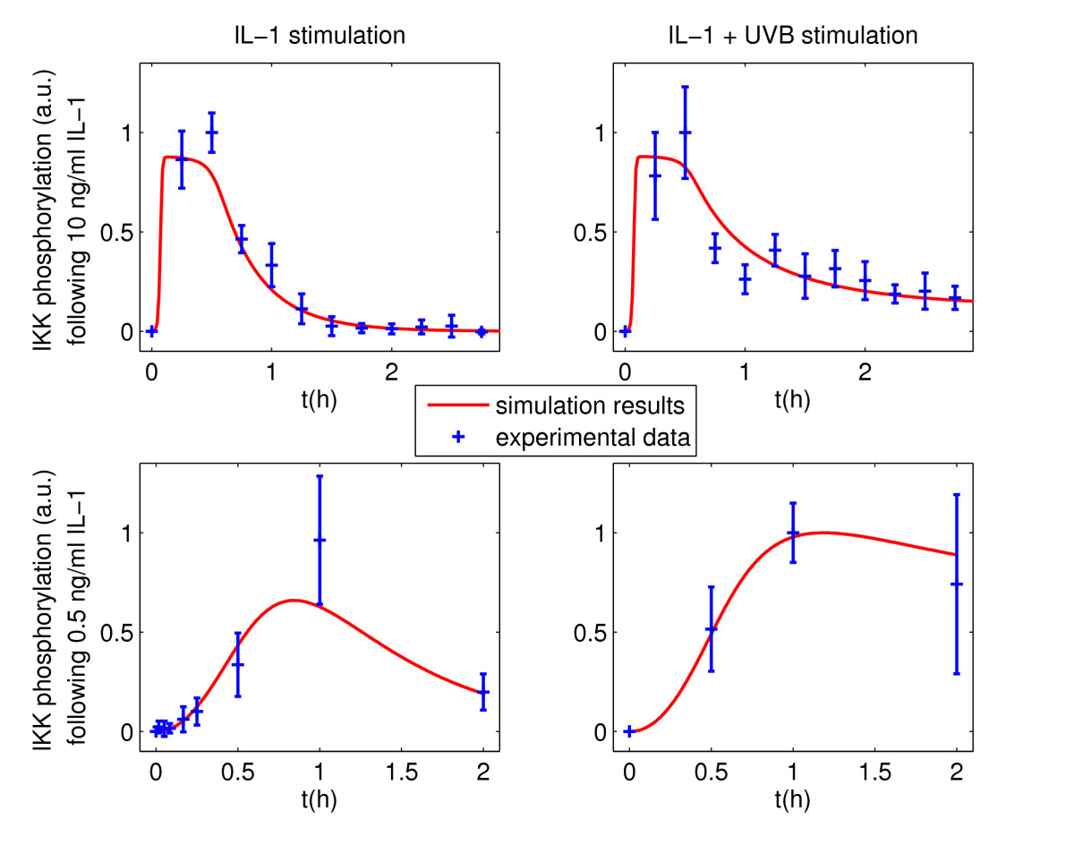http://static-content.springer.com/image/art%3A10.1186%2F1687-4153-2011-3/MediaObjects/13637_2010_Article_3_Fig3_HTML.jpg