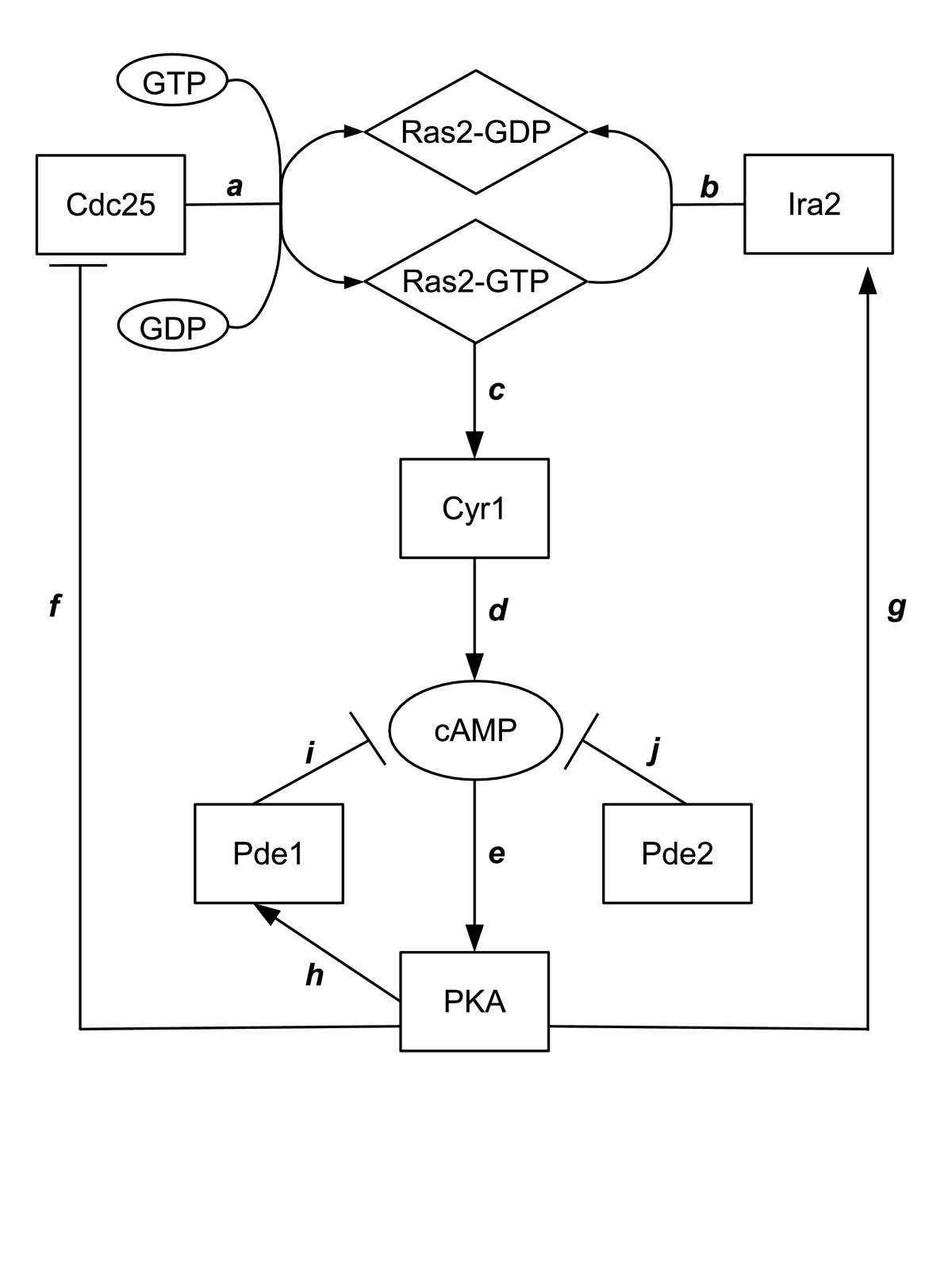 http://static-content.springer.com/image/art%3A10.1186%2F1687-4153-2012-10/MediaObjects/13637_2012_Article_15_Fig1_HTML.jpg