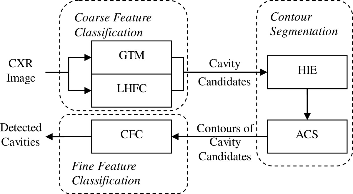 http://static-content.springer.com/image/art%3A10.1186%2F1687-5281-2013-3/MediaObjects/13640_2011_Article_39_Fig3_HTML.jpg
