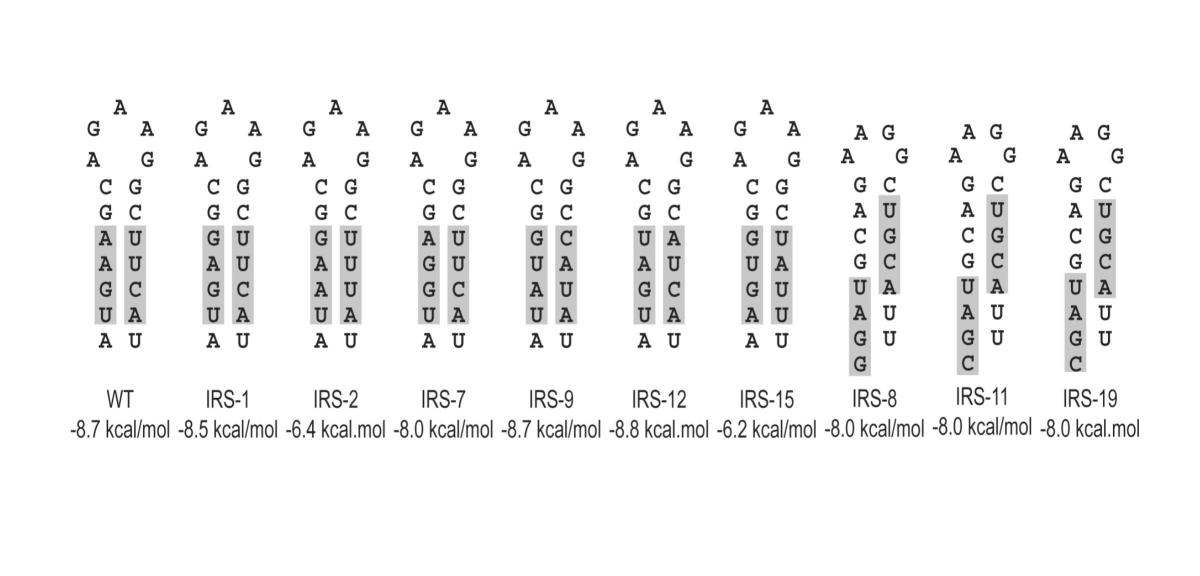 http://static-content.springer.com/image/art%3A10.1186%2F1741-7007-2-8/MediaObjects/12915_2004_Article_10_Fig3_HTML.jpg
