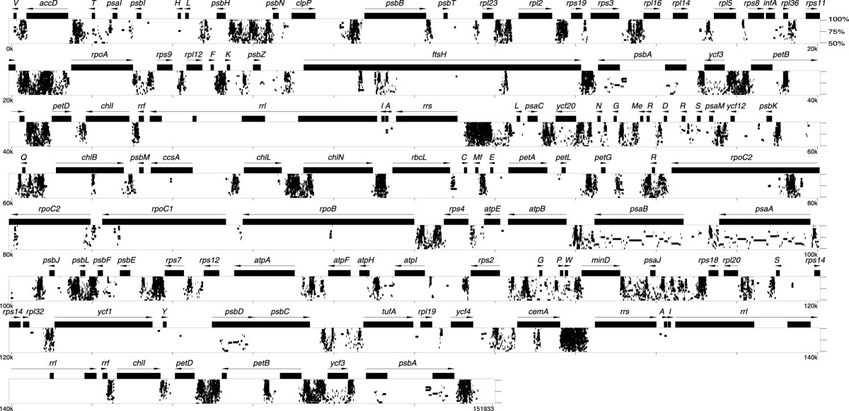 http://static-content.springer.com/image/art%3A10.1186%2F1741-7007-4-3/MediaObjects/12915_2005_Article_58_Fig5_HTML.jpg