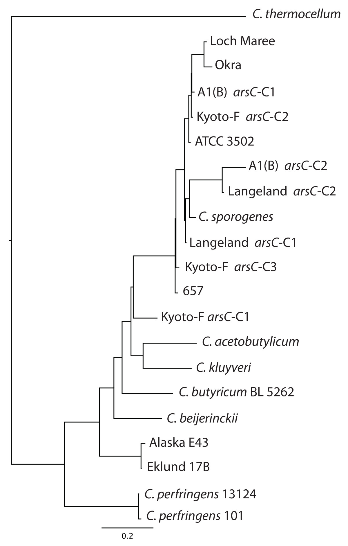 http://static-content.springer.com/image/art%3A10.1186%2F1741-7007-7-66/MediaObjects/12915_2009_Article_274_Fig6_HTML.jpg