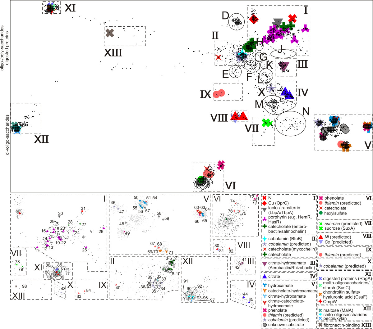 http://static-content.springer.com/image/art%3A10.1186%2F1741-7007-7-68/MediaObjects/12915_2009_Article_276_Fig2_HTML.jpg