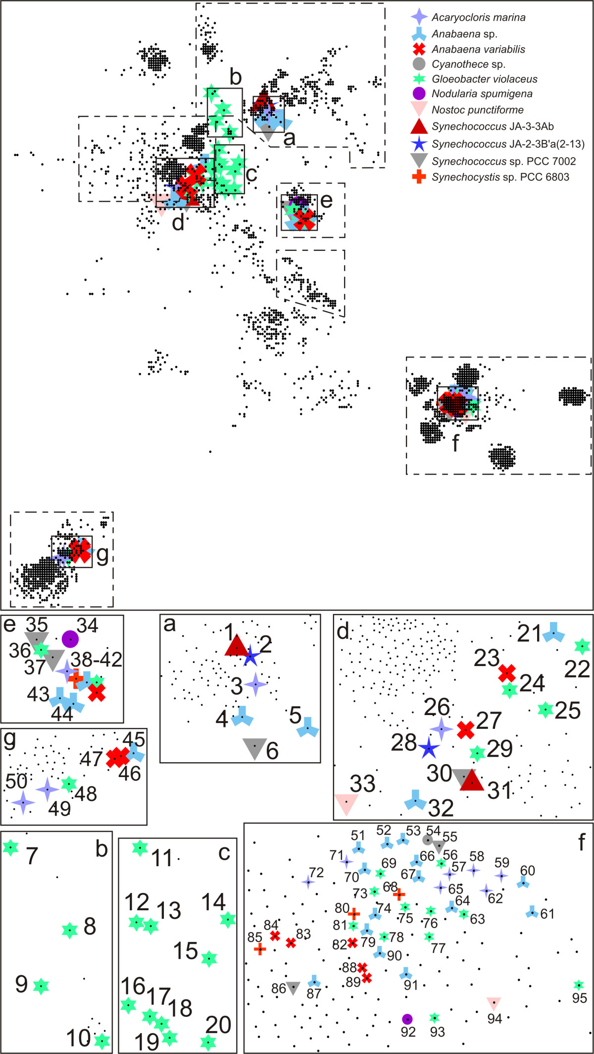 http://static-content.springer.com/image/art%3A10.1186%2F1741-7007-7-68/MediaObjects/12915_2009_Article_276_Fig3_HTML.jpg
