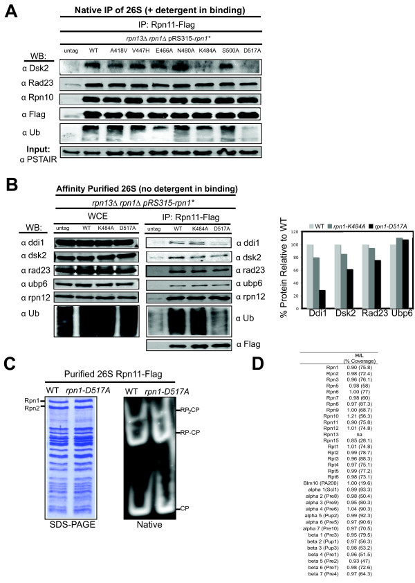 http://static-content.springer.com/image/art%3A10.1186%2F1741-7007-9-33/MediaObjects/12915_2011_465_Fig3_HTML.jpg