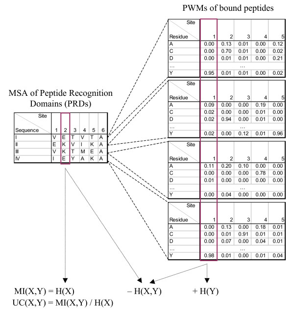 http://static-content.springer.com/image/art%3A10.1186%2F1741-7007-9-53/MediaObjects/12915_2011_483_Fig1_HTML.jpg
