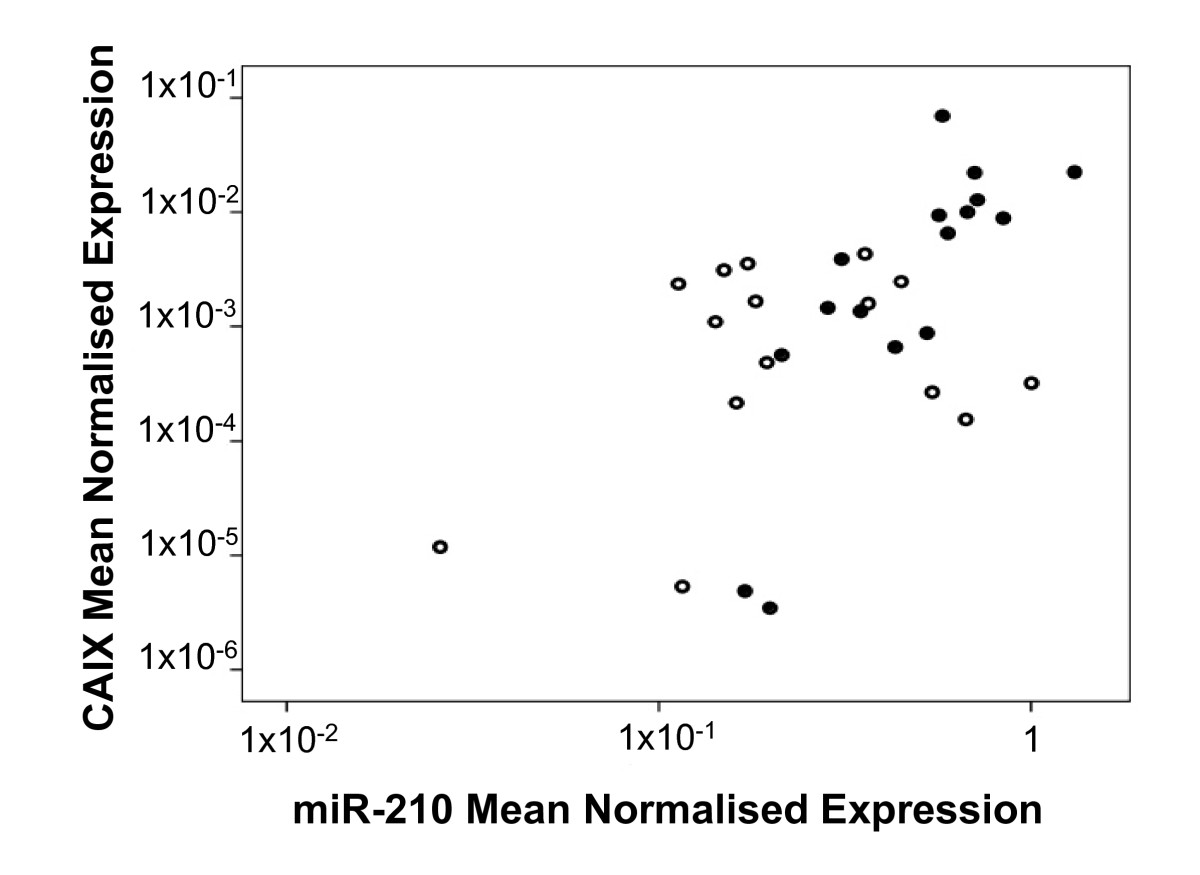 http://static-content.springer.com/image/art%3A10.1186%2F1741-7015-8-64/MediaObjects/12916_2010_Article_323_Fig6_HTML.jpg
