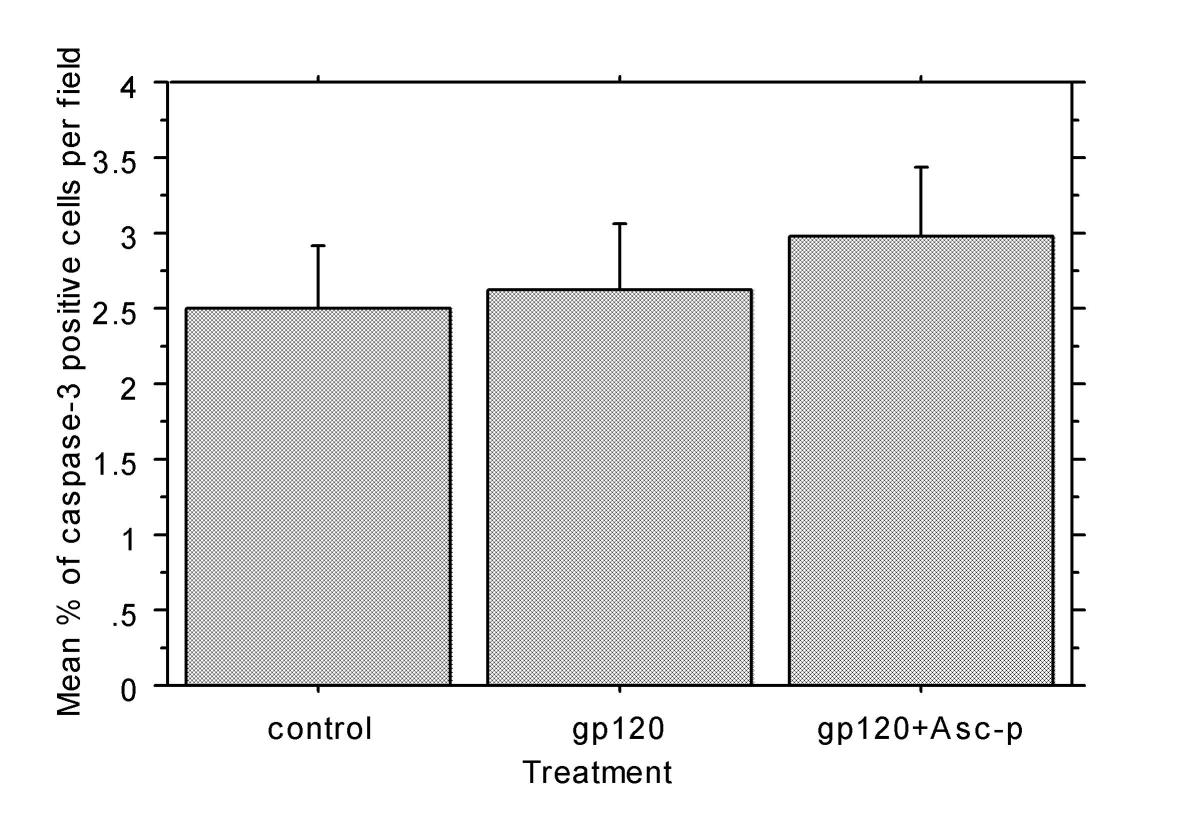 http://static-content.springer.com/image/art%3A10.1186%2F1742-2094-1-8/MediaObjects/12974_2004_Article_8_Fig6_HTML.jpg
