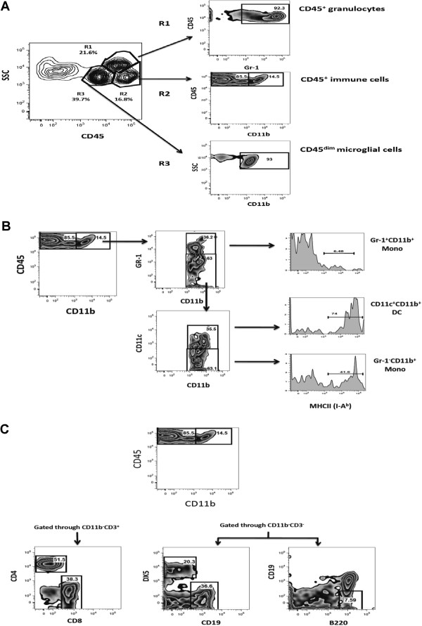 http://static-content.springer.com/image/art%3A10.1186%2F1742-2094-10-67/MediaObjects/12974_2013_835_Fig3_HTML.jpg
