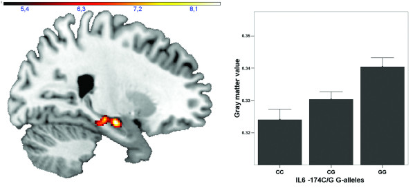 http://static-content.springer.com/image/art%3A10.1186%2F1742-2094-9-125/MediaObjects/12974_2012_567_Fig1_HTML.jpg