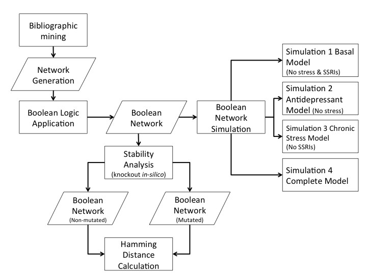 http://static-content.springer.com/image/art%3A10.1186%2F1742-4682-10-59/MediaObjects/12976_2013_Article_435_Fig1_HTML.jpg