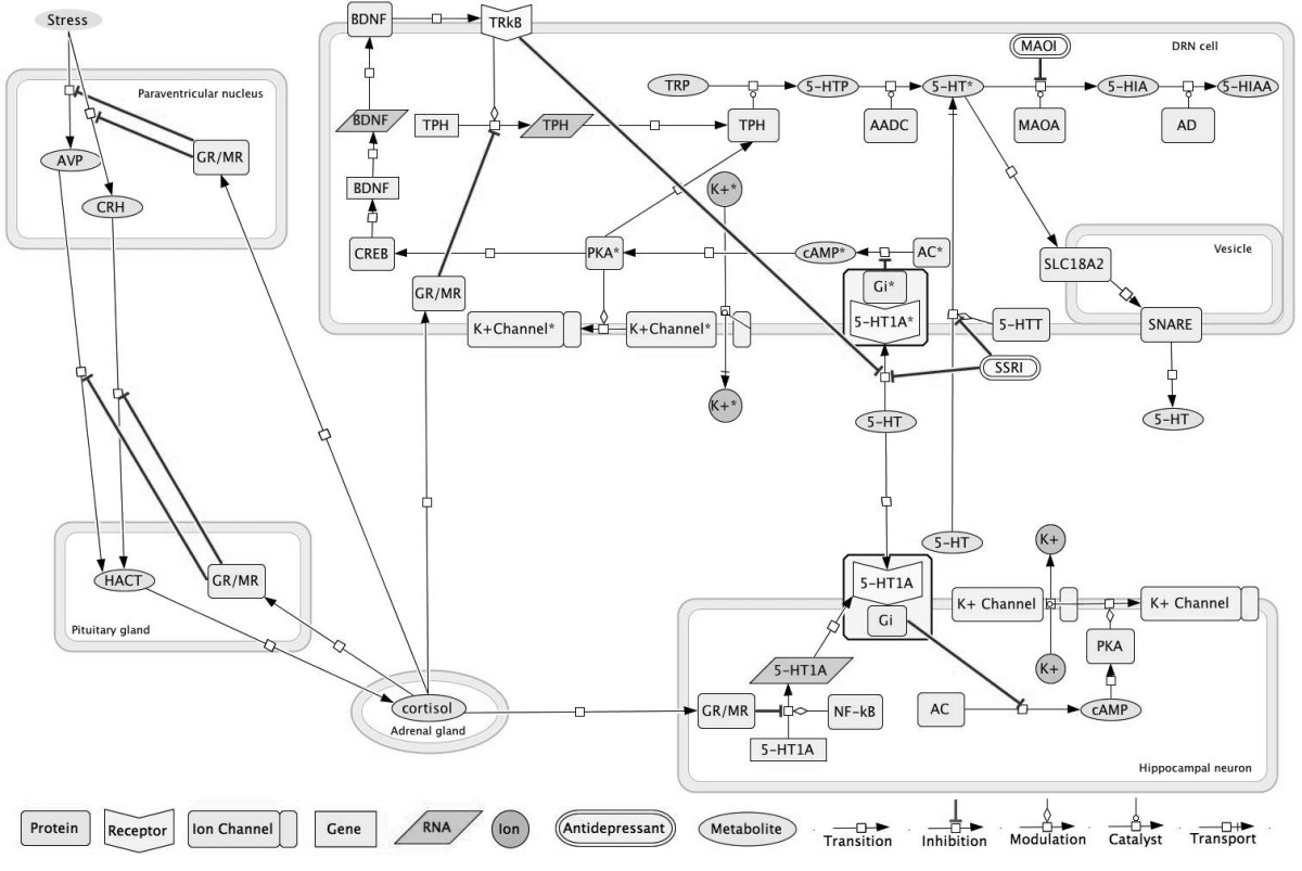http://static-content.springer.com/image/art%3A10.1186%2F1742-4682-10-59/MediaObjects/12976_2013_Article_435_Fig2_HTML.jpg