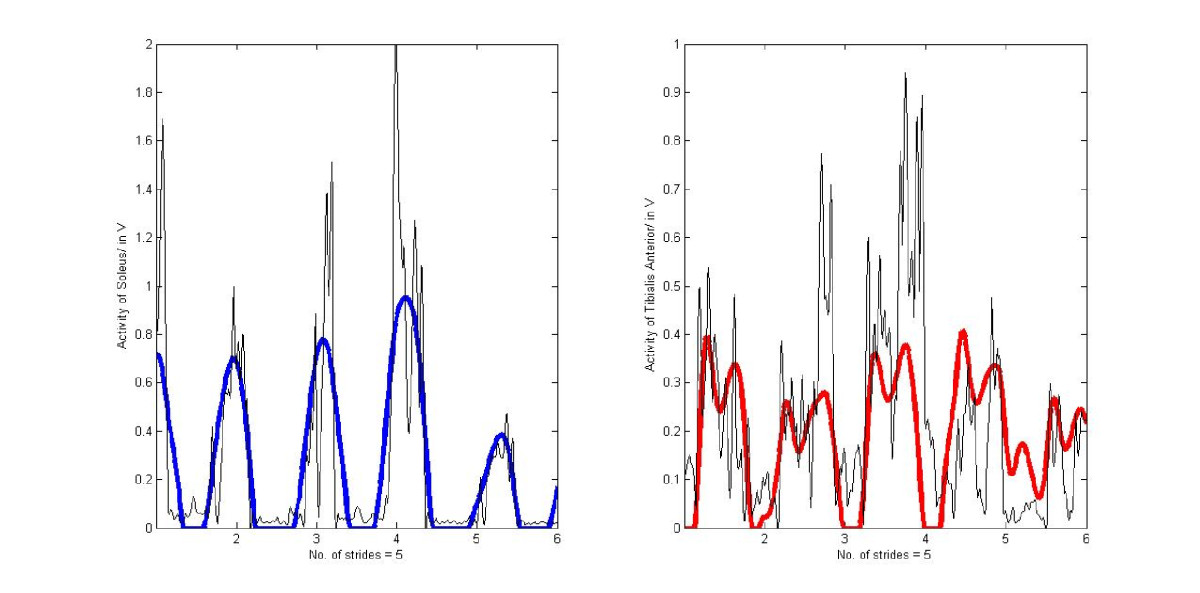 http://static-content.springer.com/image/art%3A10.1186%2F1742-4682-10-9/MediaObjects/12976_2012_Article_390_Fig5_HTML.jpg