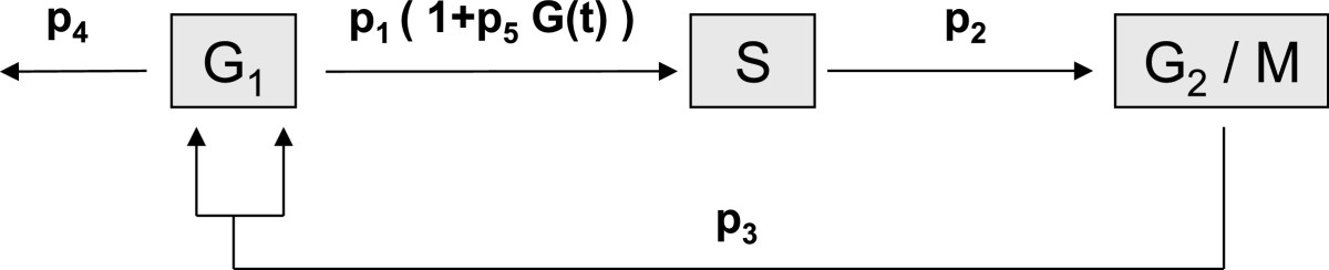 http://static-content.springer.com/image/art%3A10.1186%2F1742-4682-9-46/MediaObjects/12976_2012_Article_382_Fig2_HTML.jpg