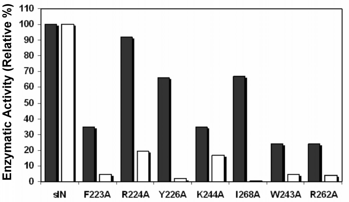 http://static-content.springer.com/image/art%3A10.1186%2F1742-4690-3-34/MediaObjects/12977_2006_Article_476_Fig2_HTML.jpg
