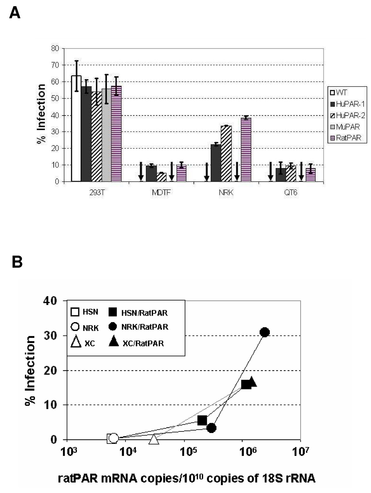 http://static-content.springer.com/image/art%3A10.1186%2F1742-4690-4-93/MediaObjects/12977_2007_Article_822_Fig1_HTML.jpg