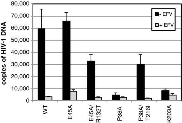 http://static-content.springer.com/image/art%3A10.1186%2F1742-4690-9-30/MediaObjects/12977_2012_2675_Fig3_HTML.jpg