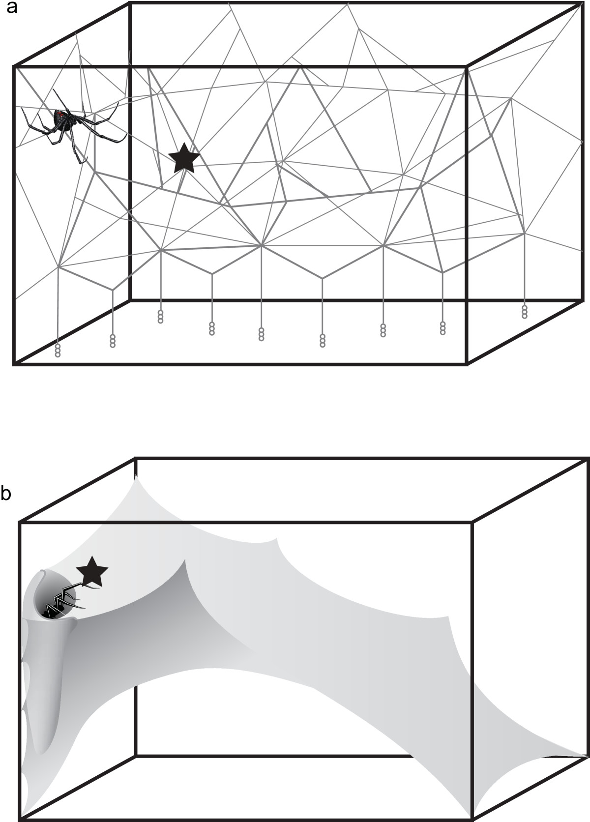 http://static-content.springer.com/image/art%3A10.1186%2F1742-9994-11-4/MediaObjects/12983_2013_Article_298_Fig1_HTML.jpg