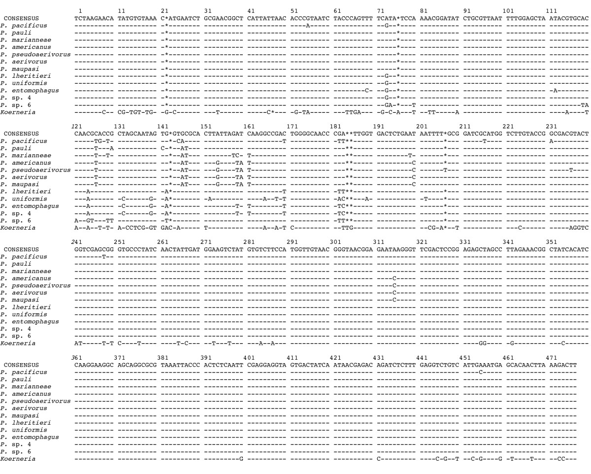http://static-content.springer.com/image/art%3A10.1186%2F1742-9994-3-14/MediaObjects/12983_2006_Article_36_Fig2_HTML.jpg