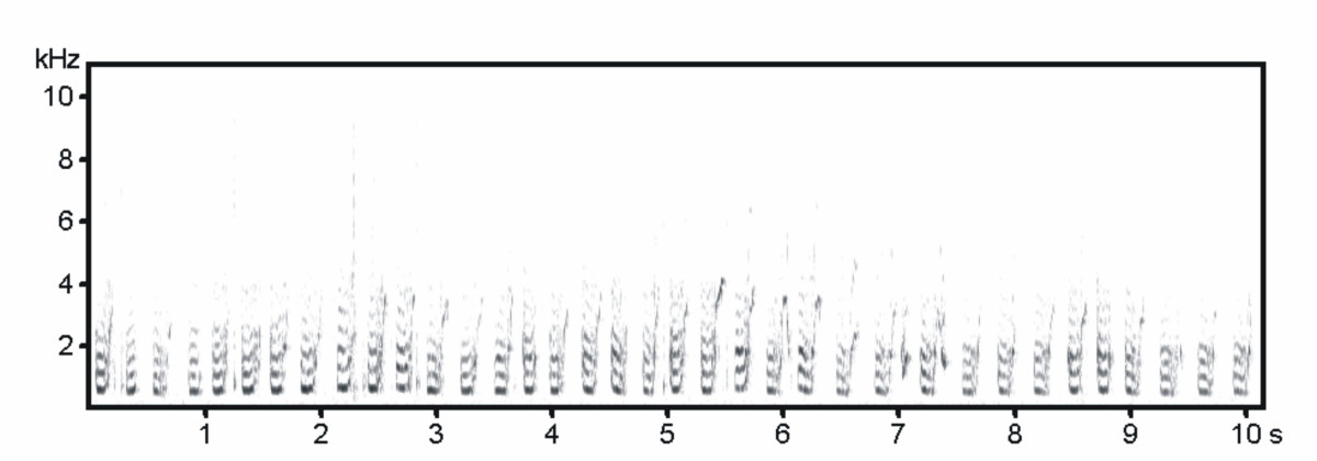 http://static-content.springer.com/image/art%3A10.1186%2F1742-9994-5-13/MediaObjects/12983_2008_Article_81_Fig1_HTML.jpg