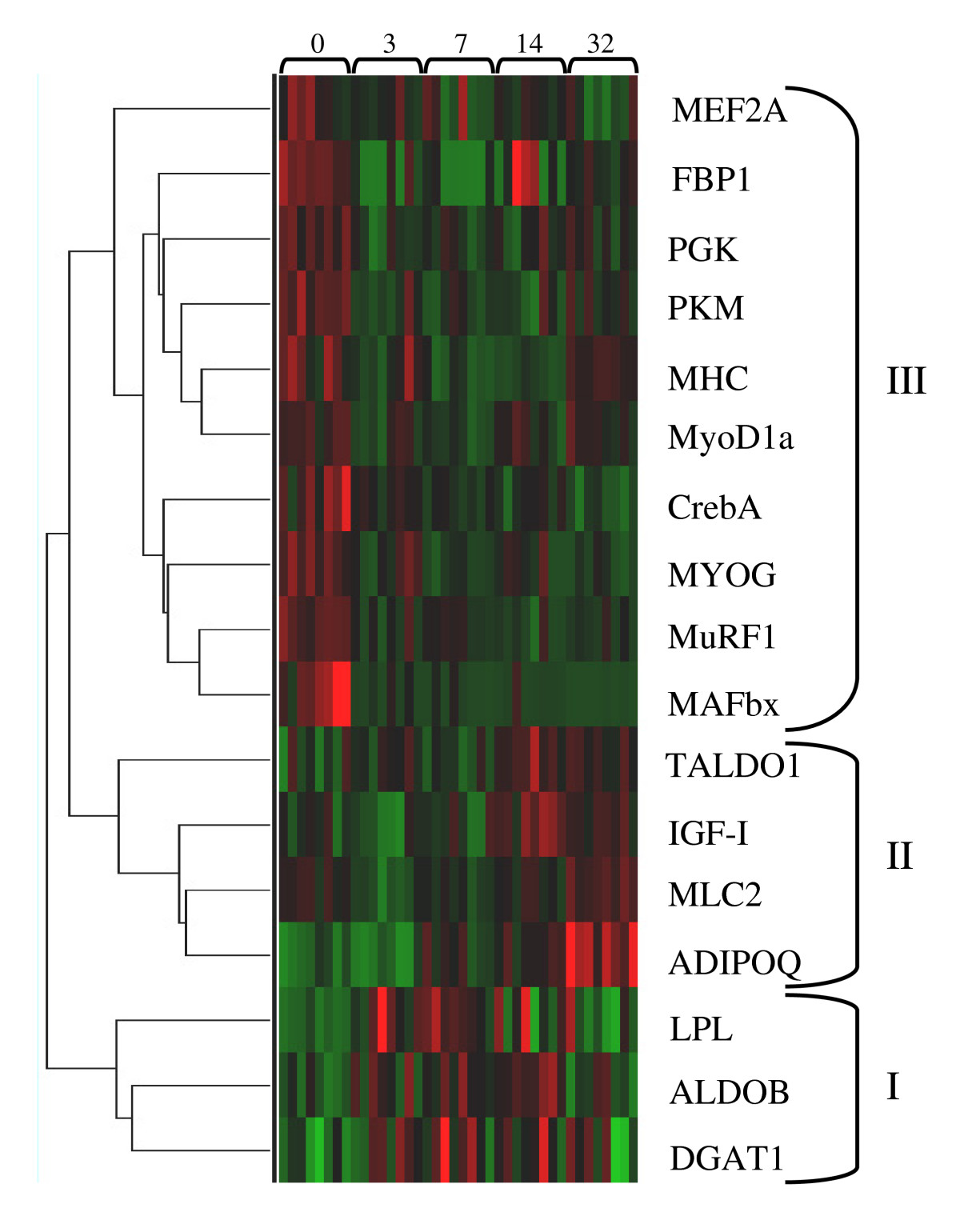 http://static-content.springer.com/image/art%3A10.1186%2F1742-9994-6-18/MediaObjects/12983_2009_Article_106_Fig2_HTML.jpg