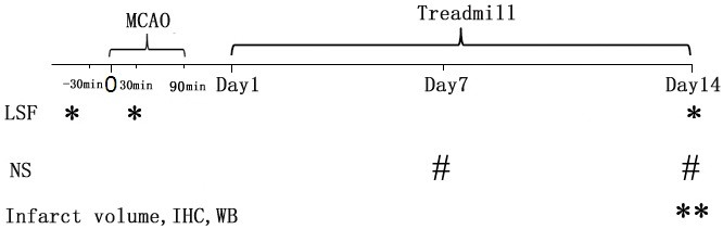 http://static-content.springer.com/image/art%3A10.1186%2F1743-0003-10-43/MediaObjects/12984_2011_Article_457_Fig1_HTML.jpg