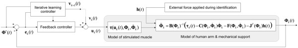 http://static-content.springer.com/image/art%3A10.1186%2F1743-0003-9-32/MediaObjects/12984_2011_Article_390_Fig3_HTML.jpg